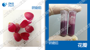 生物样品均质器 型号:Tissuelyser-FEIII